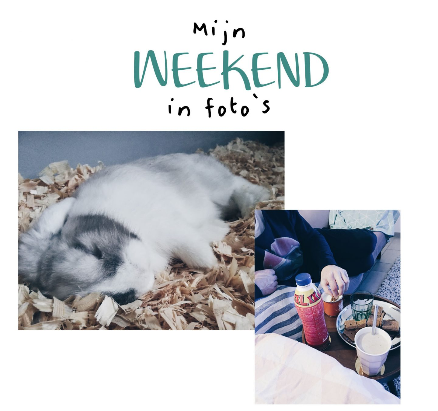 Mijn weekend in foto's.