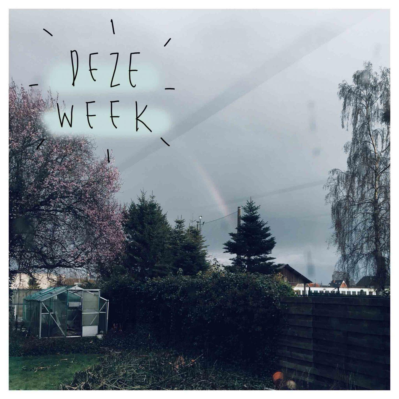 Deze week #7