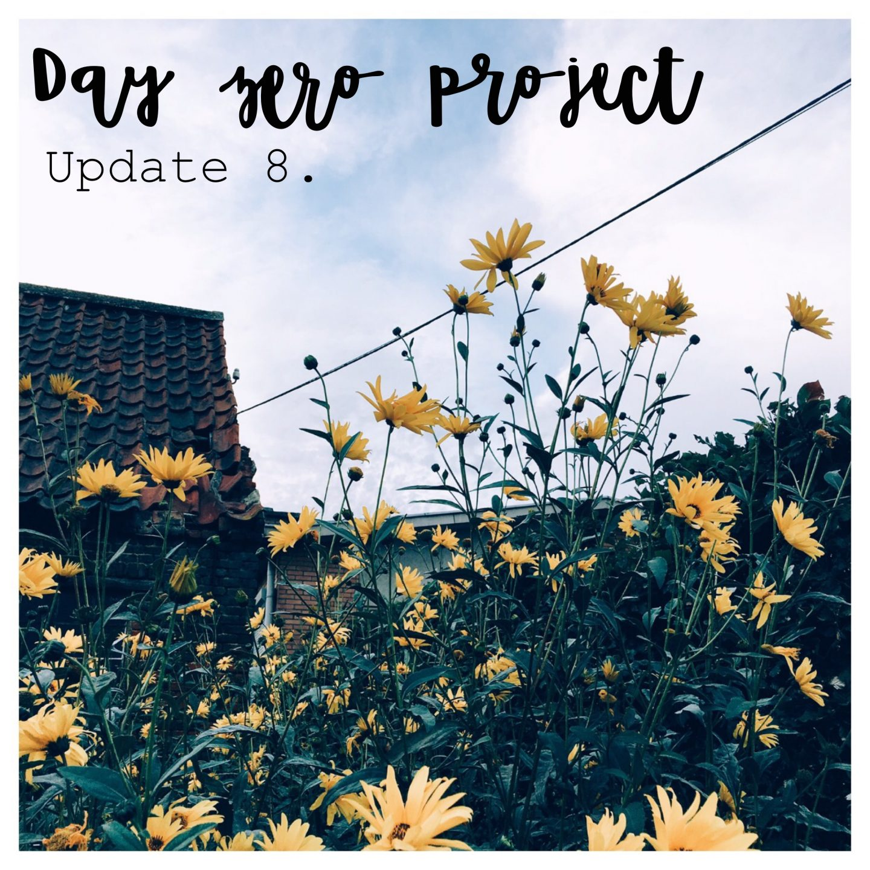 Day zero project | Update 8