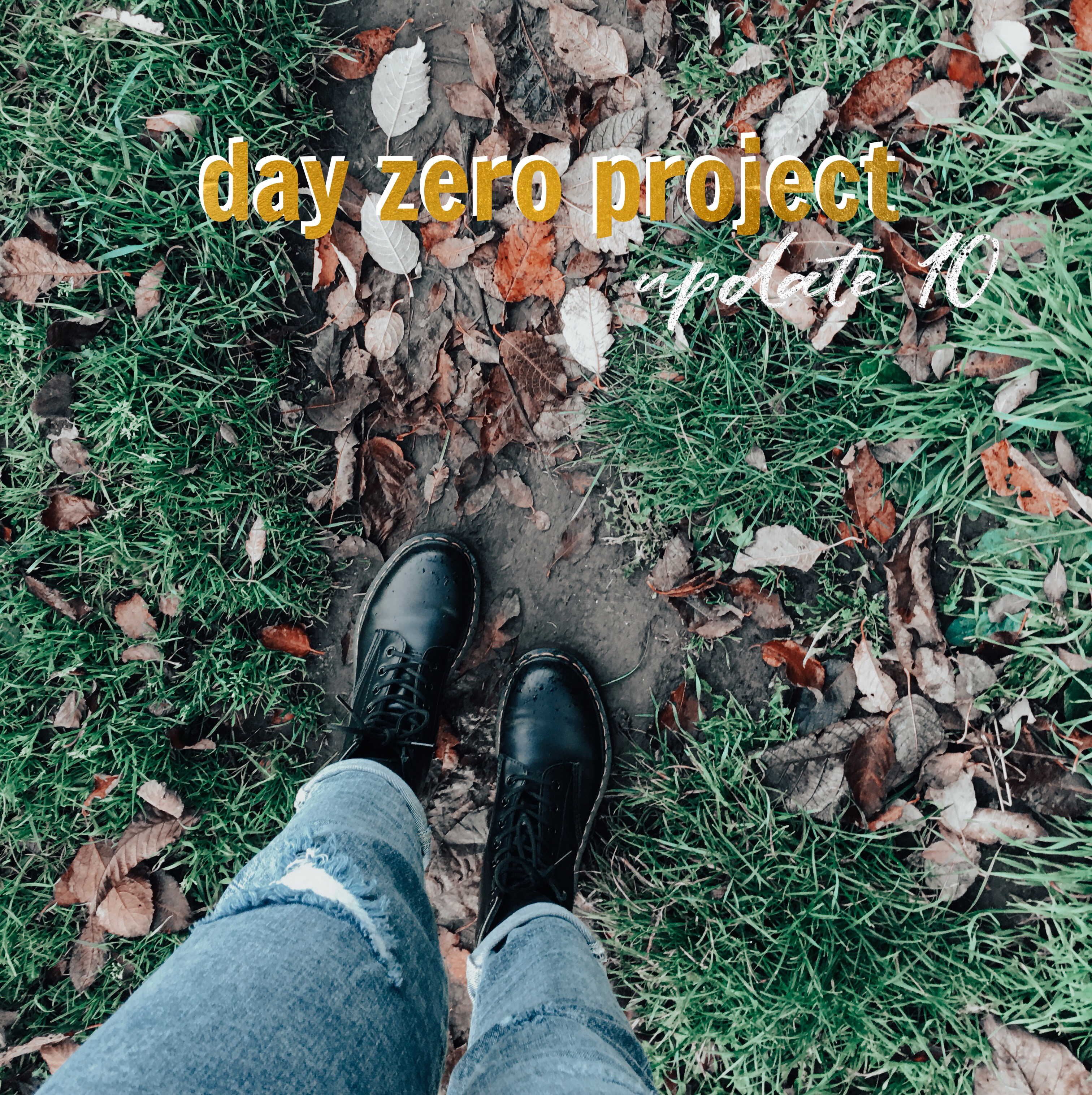 Day zero project | Update 10