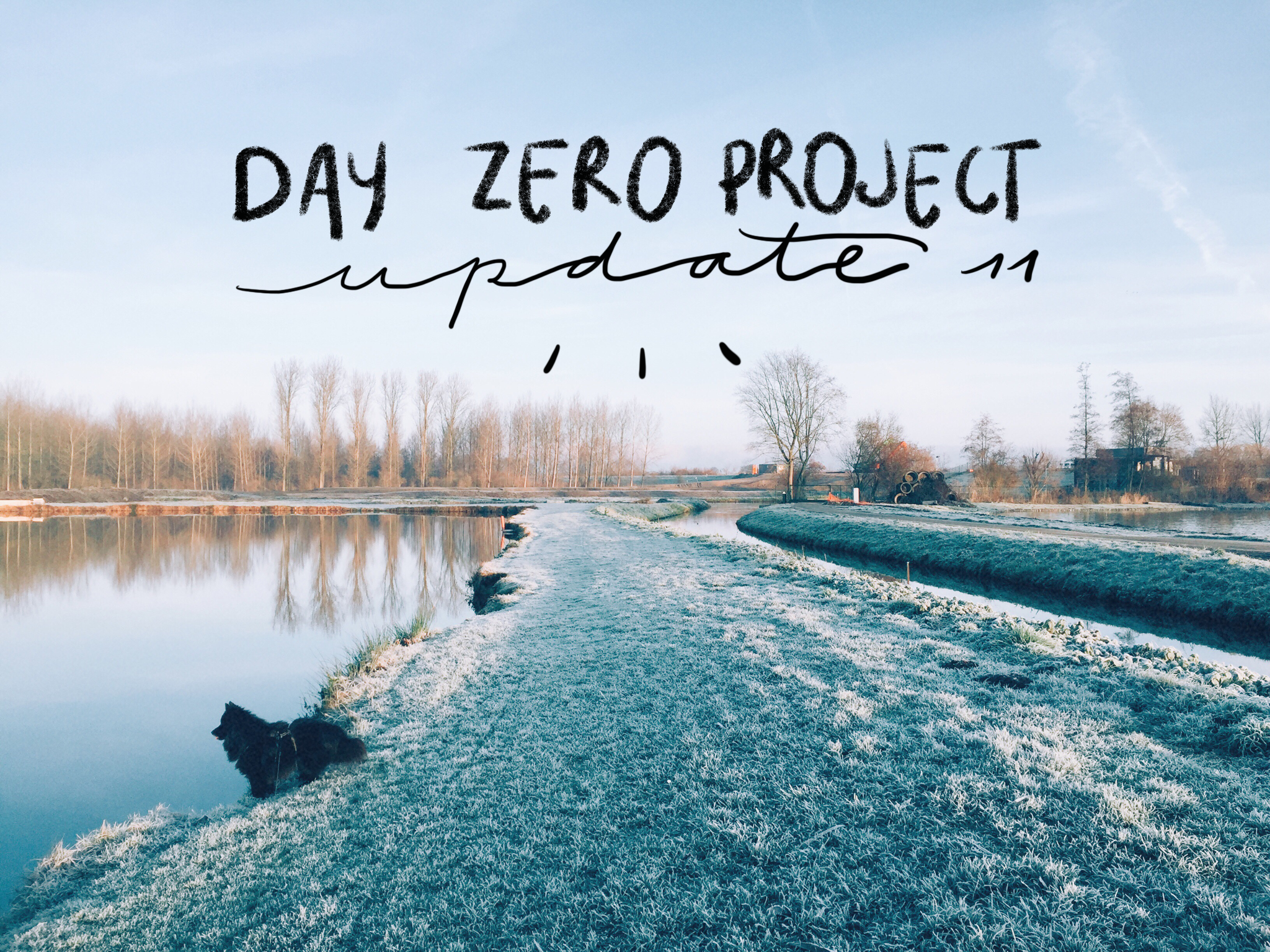 Day zero project | Update 11